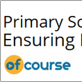 Primary School Teaching: Ensuring Excellence in Writing